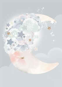 Schmooks Poster Moon Dreams