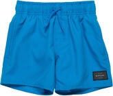 Rip Curl Wipeout Volley Shorts Badeshorts, Blue