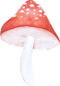That's Mine Wallsticker Mushroom Klein 2er-Pack