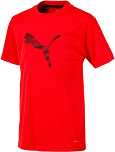 Puma Ftblplay Langarmshirt Training, Red/Blk