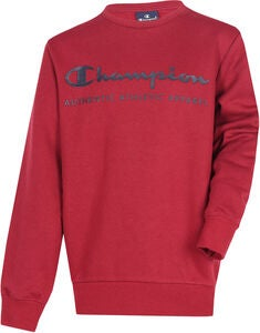 Champion Kids Crewneck Pullover, Biking red