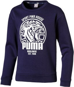 Puma Alpha Graphic Crew Pullover, Peacoat